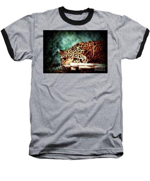 Resting Jaguar Baseball T-Shirt