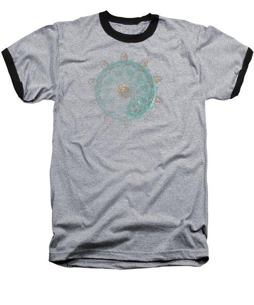 Revolving And Evolving Baseball T-Shirt