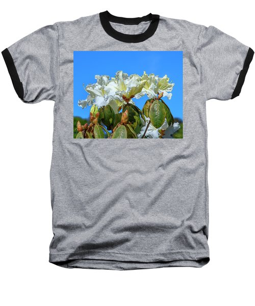 Rhododendron Ciliicalyx Dthn0213 Baseball T-Shirt