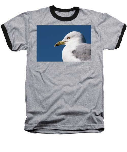 Ring-billed Gull Portrait Baseball T-Shirt
