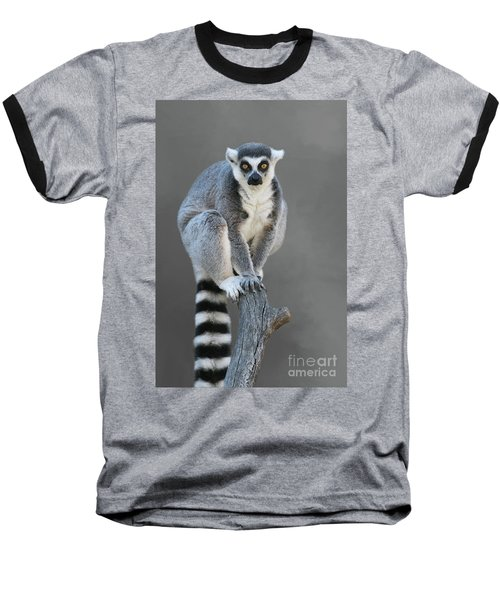 Ring-tailed Lemur #6 V2 Baseball T-Shirt