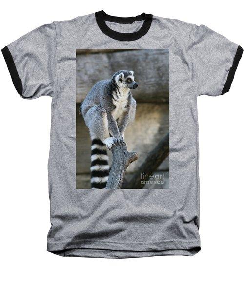 Ring-tailed Lemur #7 Baseball T-Shirt