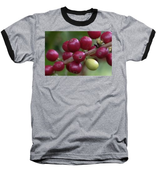 Ripe Kona Coffee Cherries Baseball T-Shirt