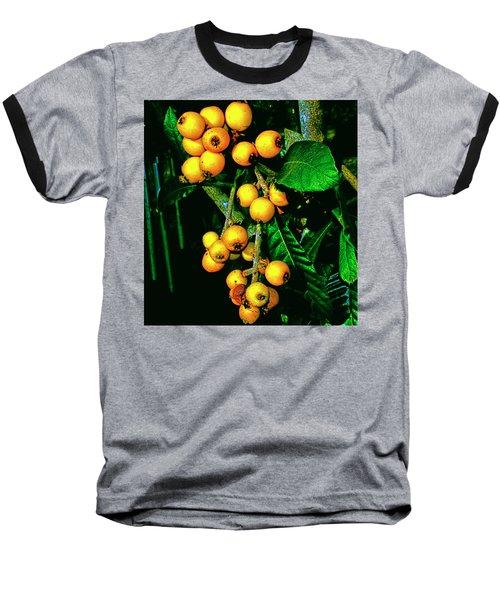 Ripe Loquats Baseball T-Shirt by Gina O'Brien