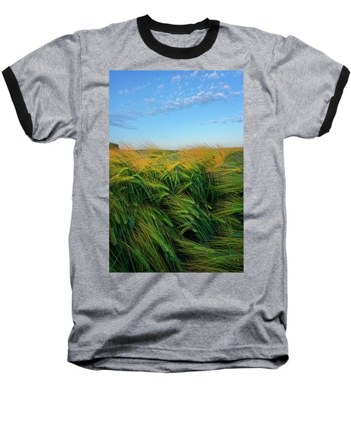 Ripening Barley Baseball T-Shirt