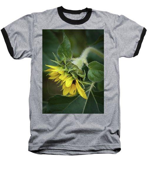 Rising Baseball T-Shirt by Nikki McInnes
