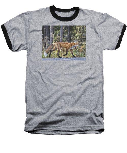 Road Weary Baseball T-Shirt by Elizabeth Eldridge