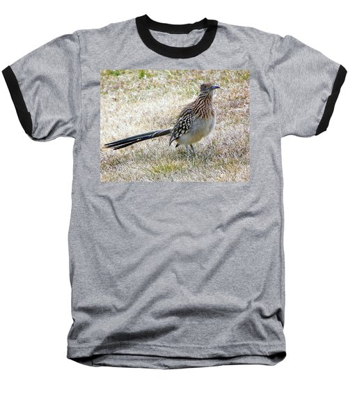 Baseball T-Shirt featuring the photograph Roadrunner New Mexico by Joseph Frank Baraba