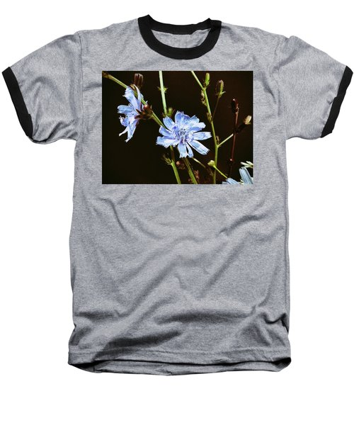 Roadside Flowers Baseball T-Shirt
