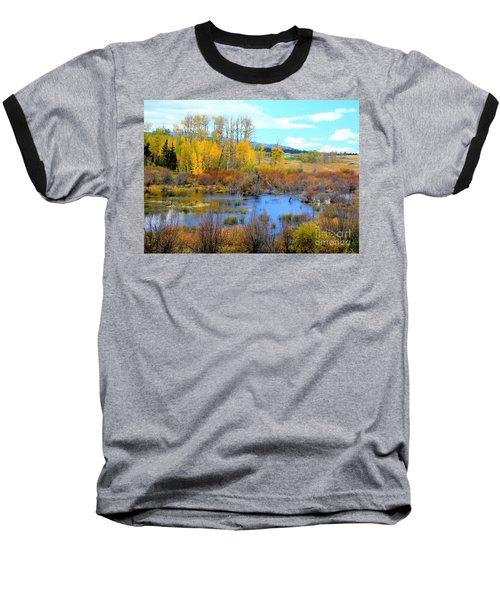 Roadside Splendor Baseball T-Shirt