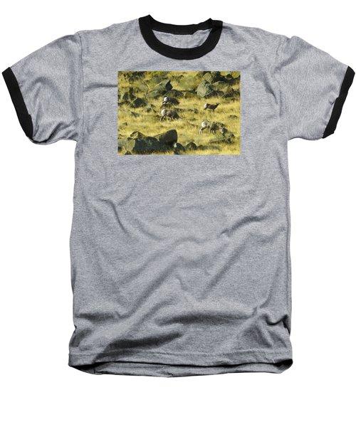 Roaming Free Baseball T-Shirt by Dale Stillman