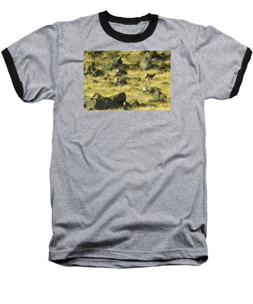 Roaming Free Baseball T-Shirt