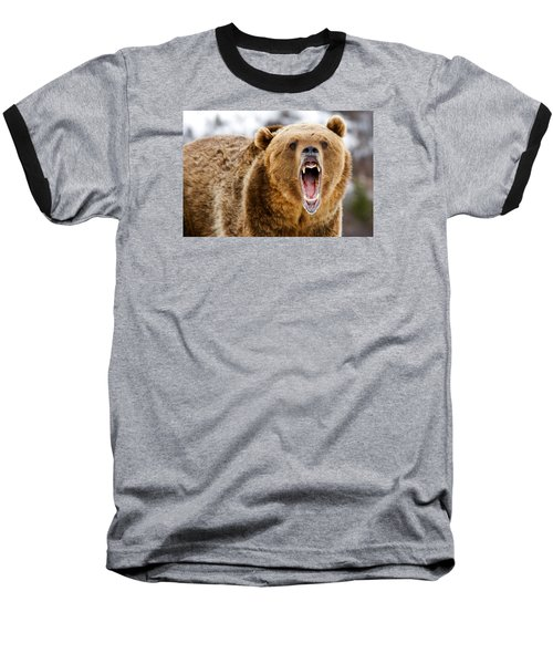 Roaring Grizzly Bear Baseball T-Shirt