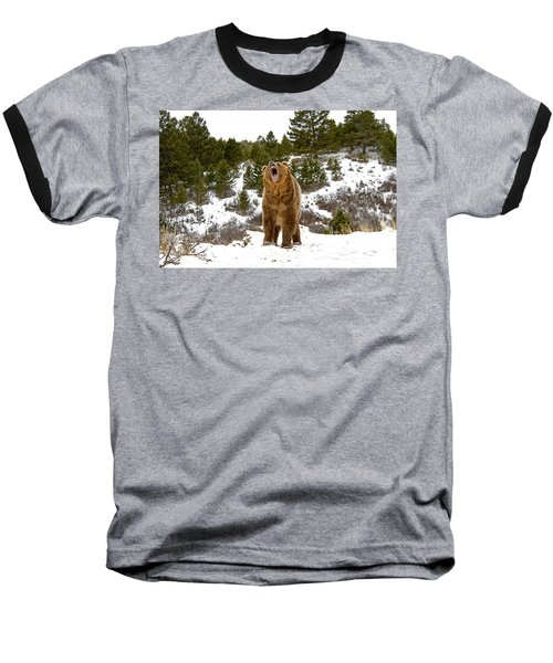 Roaring Grizzly In Winter Baseball T-Shirt