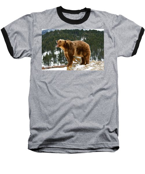 Roaring Grizzly On Rock Baseball T-Shirt