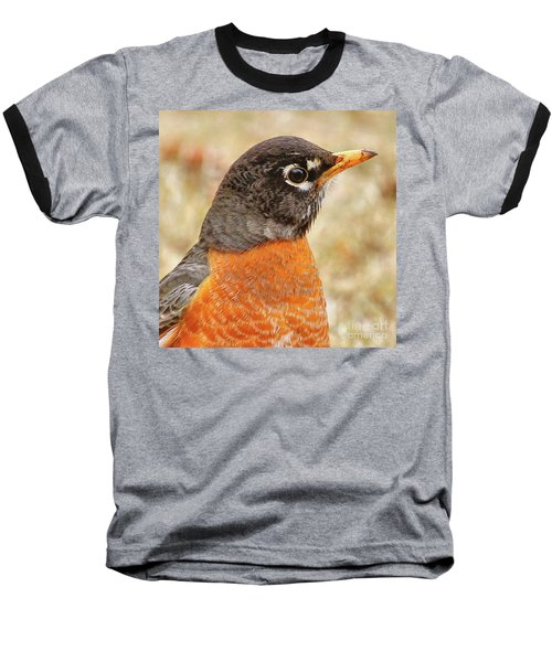 Baseball T-Shirt featuring the photograph Robin by Debbie Stahre