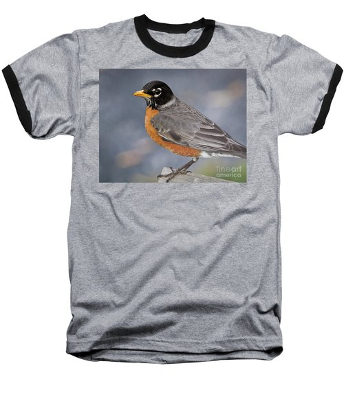 Robin Baseball T-Shirt by Douglas Stucky