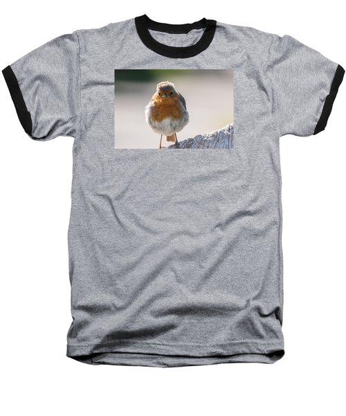 Robin Front Baseball T-Shirt