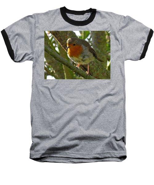 Robin In A Tree Baseball T-Shirt