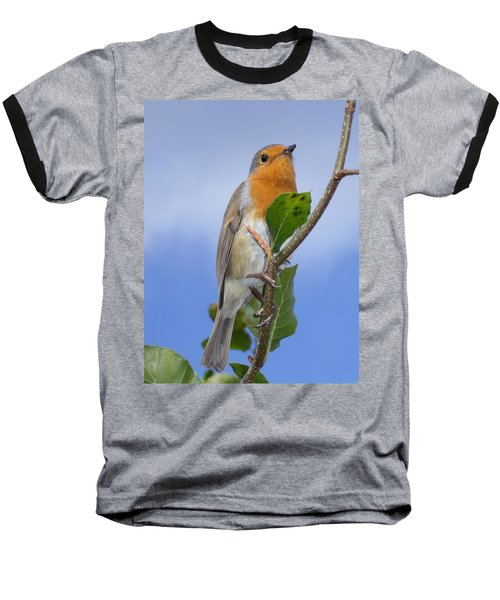 Robin In Eden Baseball T-Shirt