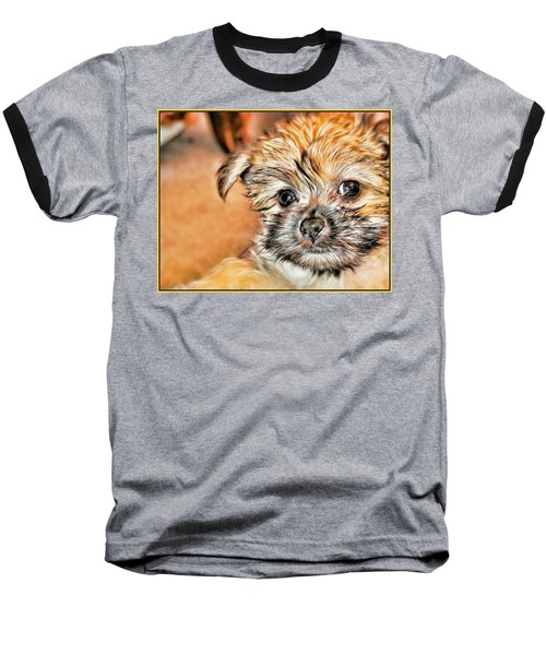 Baseball T-Shirt featuring the photograph Robin by Mindy Newman