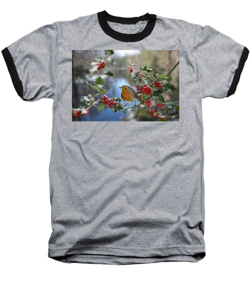 Robin On Holly Branch Baseball T-Shirt