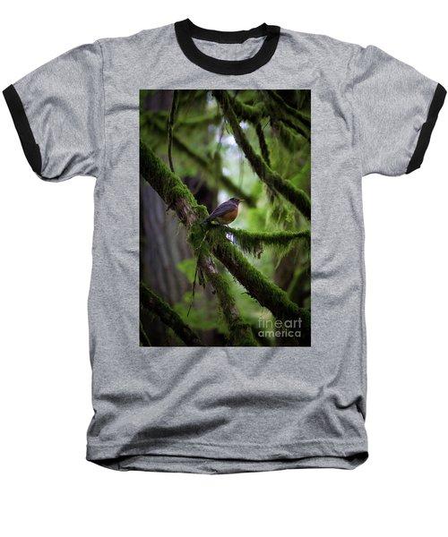Robin Vignette Baseball T-Shirt