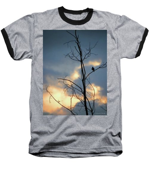 Baseball T-Shirt featuring the photograph Robin Watching Sunset After The Storm by Sandi OReilly