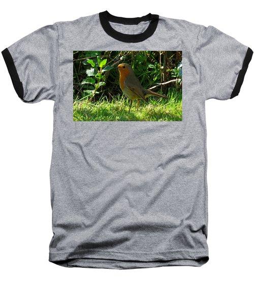 Robin2 Baseball T-Shirt