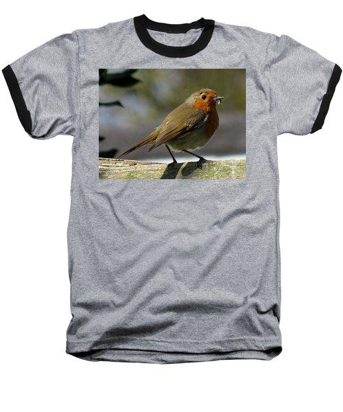 Robin3 Baseball T-Shirt