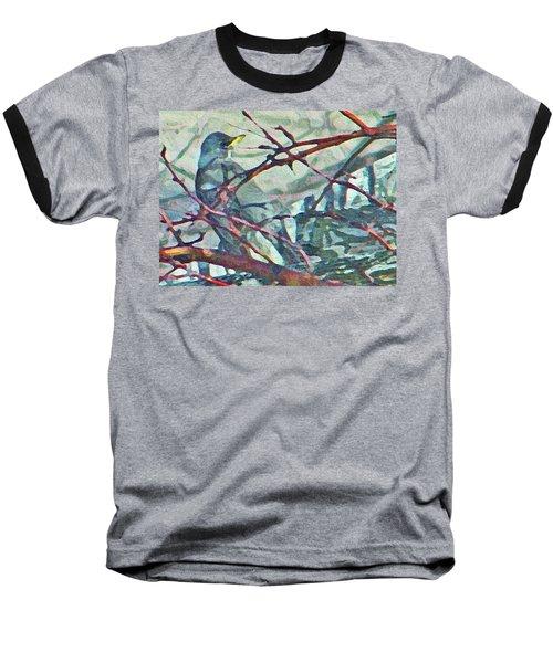 Robins Impression Of Spring Baseball T-Shirt
