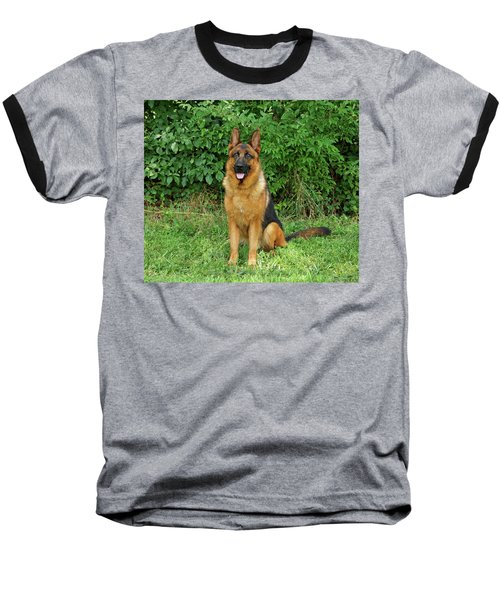 Baseball T-Shirt featuring the photograph Rocco Sitting by Sandy Keeton