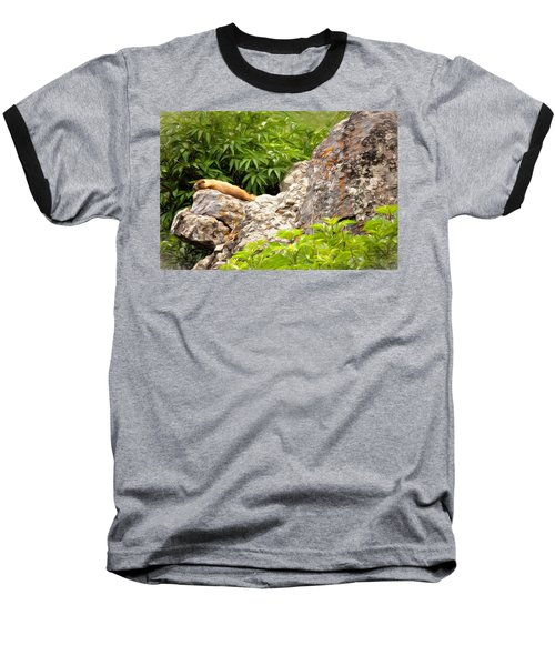 Baseball T-Shirt featuring the photograph Rock Chuck by Lana Trussell