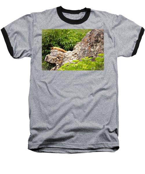 Rock Chuck Baseball T-Shirt