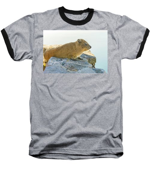 Rock Hyrax On Table Mountain Cape Town South Africa Baseball T-Shirt by Marek Poplawski