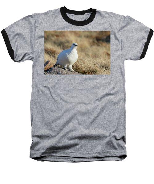Rock Ptarmigan Baseball T-Shirt