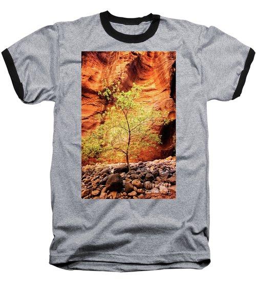 Rock Tree Baseball T-Shirt