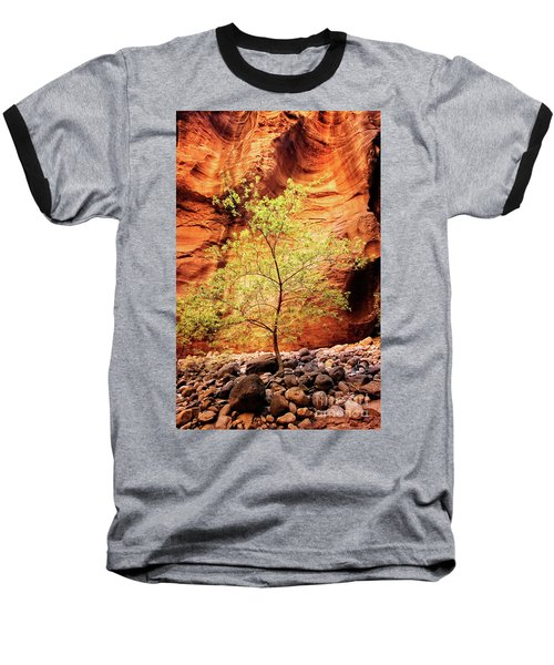 Rock Tree Baseball T-Shirt