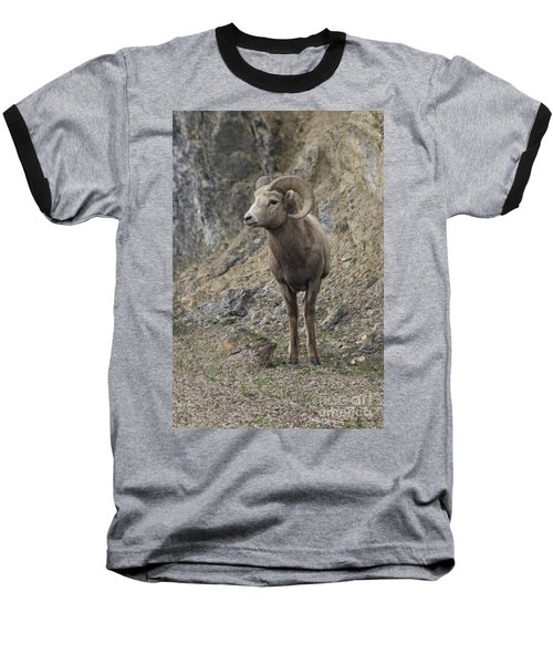 Rockies Big Horn Baseball T-Shirt