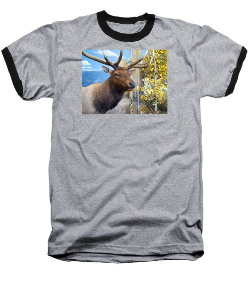 Baseball T-Shirt featuring the photograph Rocky Mountain Elk by Karon Melillo DeVega