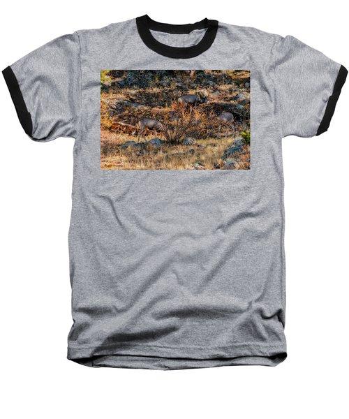 Rocky Mountain National Park Deer Colorado Baseball T-Shirt