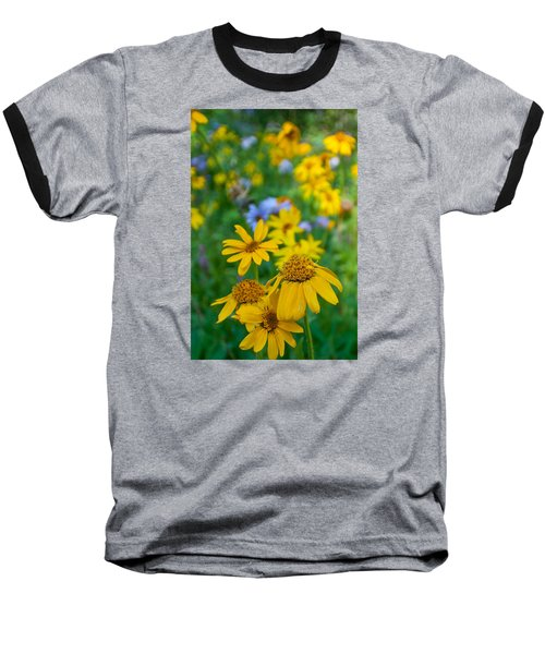 Rocky Mountain Wildflowers Baseball T-Shirt