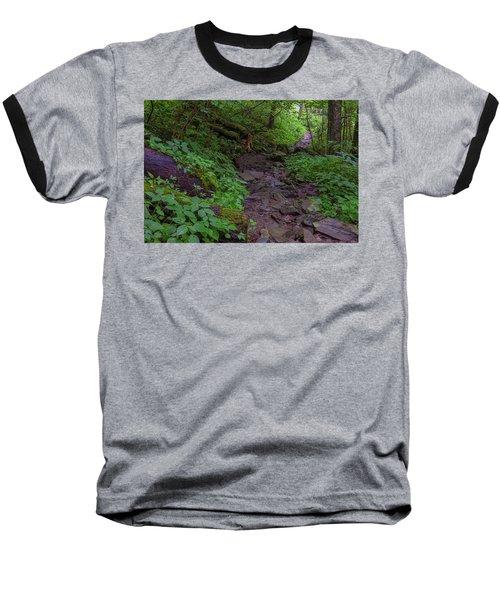 Rocky Path Baseball T-Shirt by David Cote