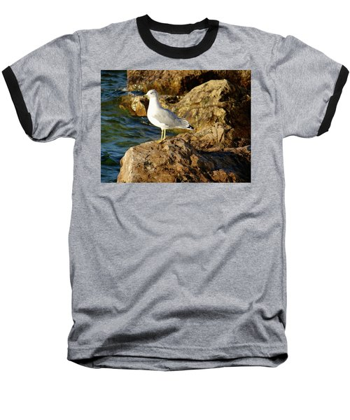 Rocky Waters Baseball T-Shirt
