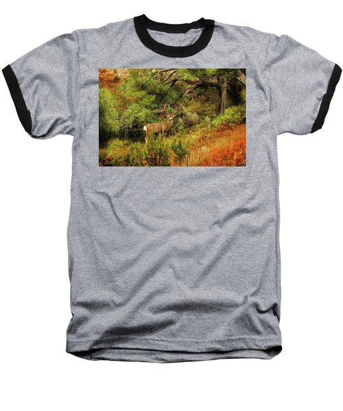 Roosevelt Deer Baseball T-Shirt