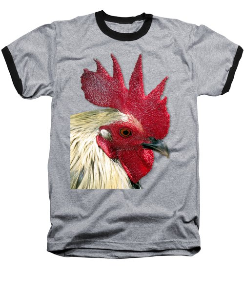 Rooster Baseball T-Shirt by Bob Slitzan