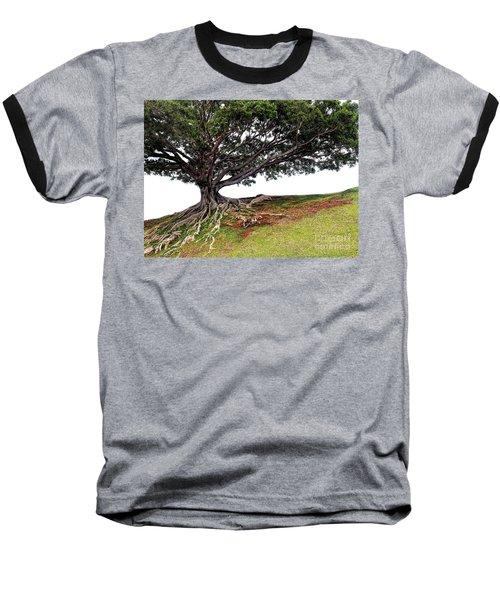 Roots Of Honolulu Baseball T-Shirt by Gina Savage