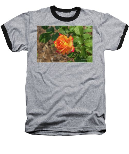 Baseball T-Shirt featuring the photograph Rosa Peace by Jim Lepard