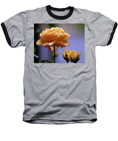 Rose 1156 H_2 Baseball T-Shirt