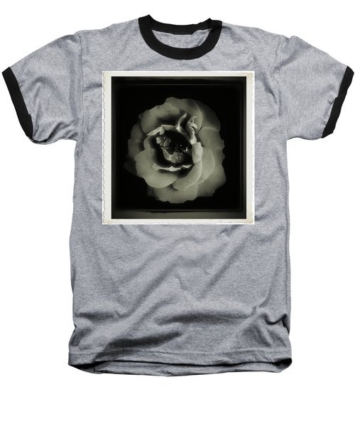 Rose 12 Baseball T-Shirt by John Krakora